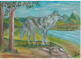 loup by angeloup
