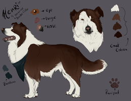 Henri Reference Sheet by KaiKenNatsuki