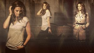 Stana Katic Wallpaper by go4music