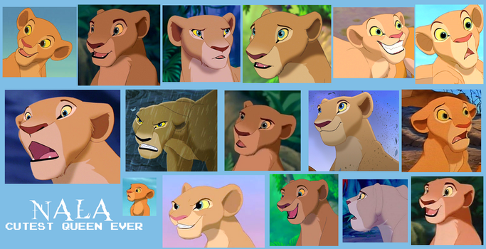 Nala From Lion King Collage by Scamp4553