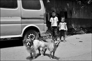 Dogs and childrens by Toolbazar