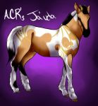 Ja'uda by Angel-Creek-Ranch
