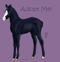 FoalAdoptable5 by ReeseS8