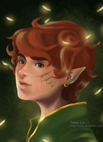 elf_boy by Tanei