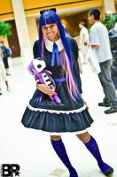 AWA 2012: Anarchy Stocking by DaisyPhantom