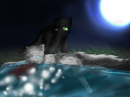 You Can Never Go Back~ Ashfur by son-zu