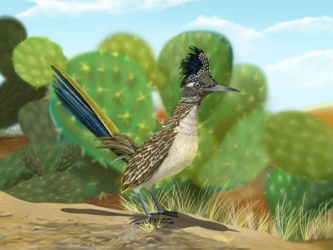 The Roadrunner by gusvader