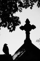Raven and Cross 3 by Heurchon