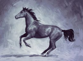 Horse by Tohad