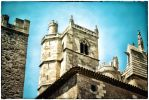 Cathedral of Narbonne I by calimer00