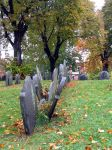 Boston Grave stones by oldsoulmasquer