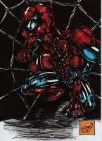 spiderman litho by darkartistdomain