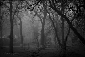 Morning fog... by nox-moonLover