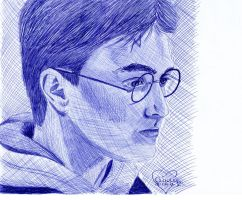 Harry Potter ballpoint by Cindy-R