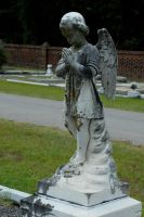Taylor Jackson Cemetery 12 by LinzStock