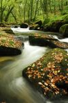 Cornish Stream by midlander1231