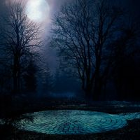 Circle Premade BG by StarsColdNight