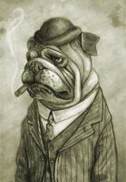 Bulldog by Dr-K