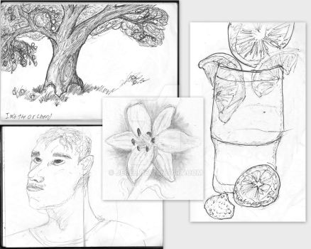 observation drawings by jecle