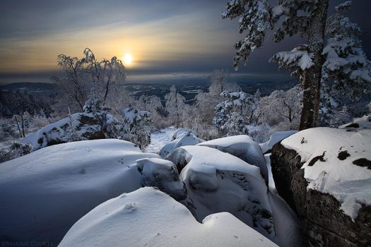 Winter Marvels by MaximeCourty