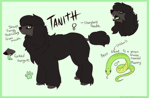 Tanith Reference Sheet by PinkPoodle543