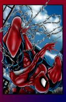 spidey colored 2k4 by toddrayner