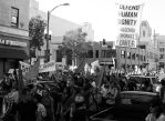 Anti-Capitalism March, the Oakland General Strike by lost-capella
