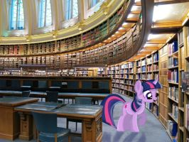 Twilight's Library by Sux2suk59