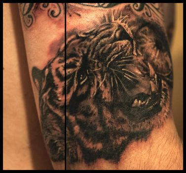 Tiger tattoo by brokenpuppet86