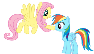 Fluttershy and Rainbow Dash by sofunnyguy