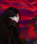 Blood red sky by ionelaqwet