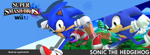 Super Smash Bros. For Wii U/3DS - Sonic FBCover by egallardo26