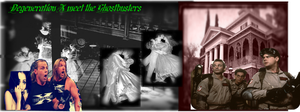 DX-Ghostbusters fic Banner by Selenalunarox