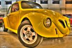 Beetle HDR by Nine80