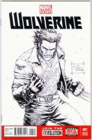 Wolverine Blank Cover Commission by werder