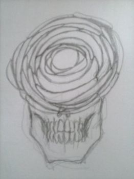 Skull Roses concepts Cam02233 by LordFirekaze