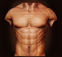Male Anatomy - Front 01 by shoaibMalik