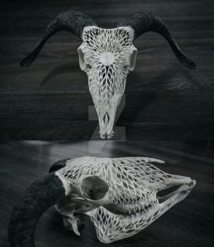 Carved Sheep Skull, Sun by VictorSeiche