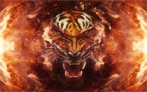Tiger blast by PimArt