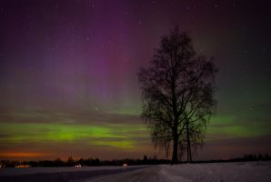 Northern lights by dn1w3r