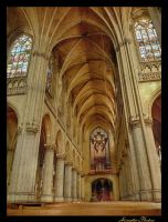 Cathedral of the Virgin Mary by Alouette-Photos