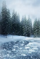Winter Dream backgrounds by moonchild-lj-stock