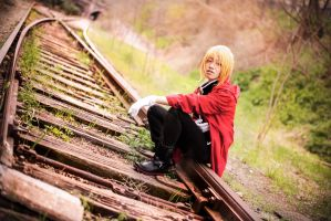 Fullmetal Alchemist - Stray Dog by TrustOurWorldNow