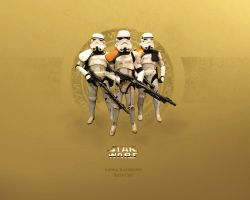 Sandtrooper Unit by 1darthvader