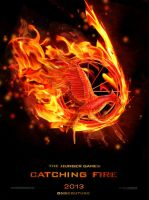 Catching Fire Movie Poster, Hunger Games Trilogy by dnbcouture