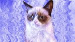 Watery Grumpy Cat by DumbledoreIsAmazing