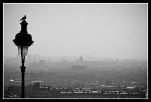 Paris from Above by Lainyxox