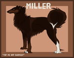 Miller Reference by Aki-the-wolf