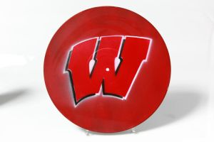 Wisconsin Badgers by phat94probe