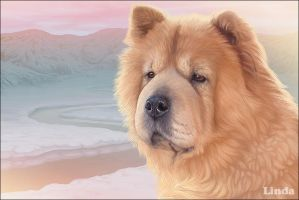 Felicia - Chow Chow by chipset